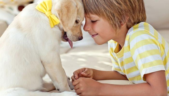 Cómo enseñar a los niños a comportarse con los perros