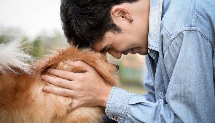Los latidos del corazón humano y perros Alinear