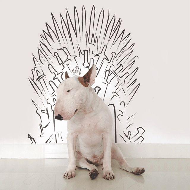 juego-de-tronos-perro