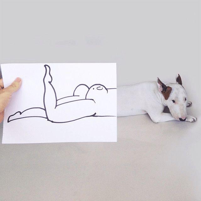 Nakie-perro