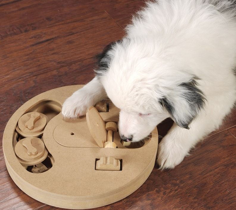 juguete del rompecabezas de perro