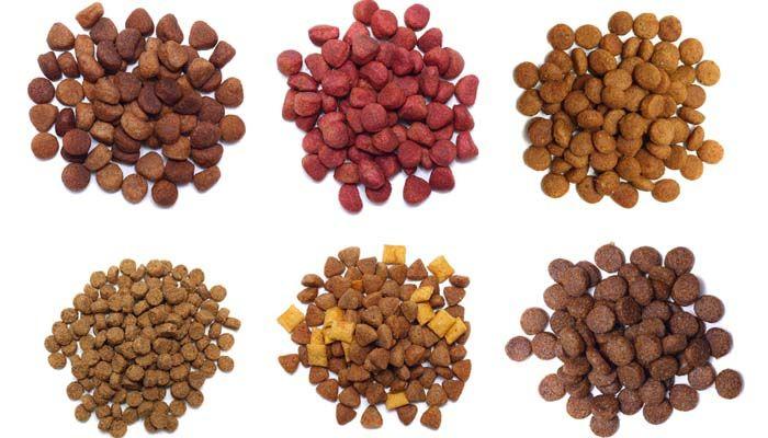Todos los tipos de alimentos para perros en el mercado comercial de alimentos para mascotas
