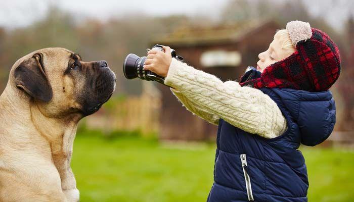 CГіmo tomar las grandes fotos de su perro y dejar que sus hijos lo hacen