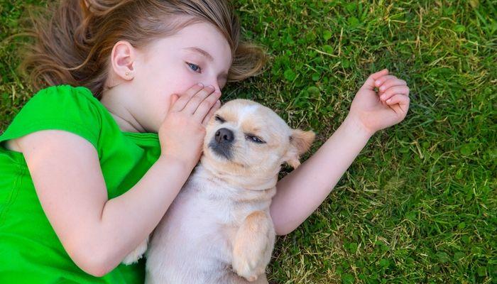 Amar a una mascota ayuda a reducir el estrГ©s en los niГ±os de familias de militares