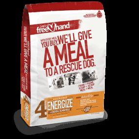 Voto en los premios enviar dogington: mejor comida seca para perros