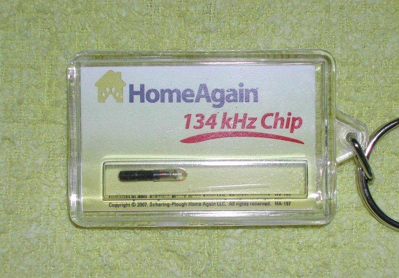 Microchip para perros