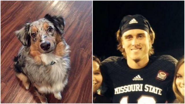 Estado de missouri quarterback suspendido por acusaciones de abuso perro horrible