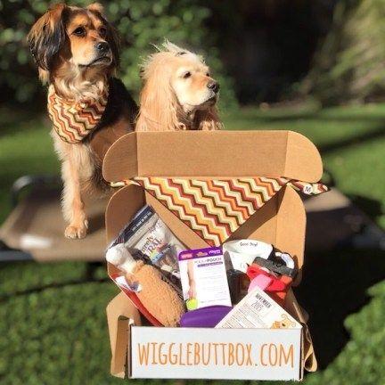caja wigglebutt