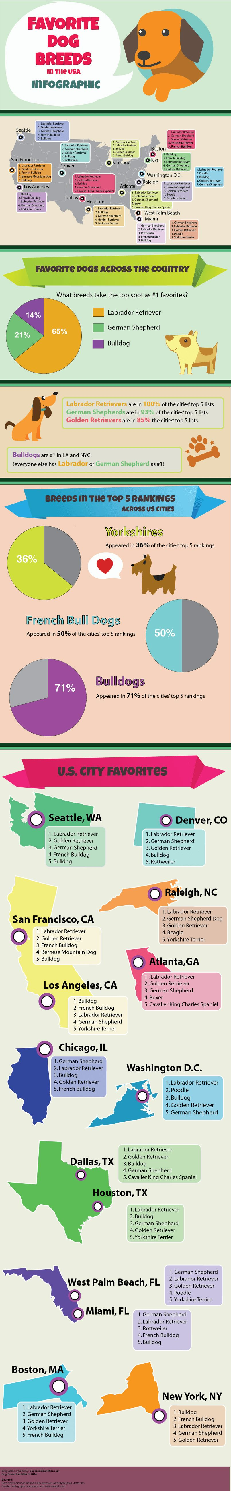 La mayoría de las razas de perros más populares en los ee.uu.