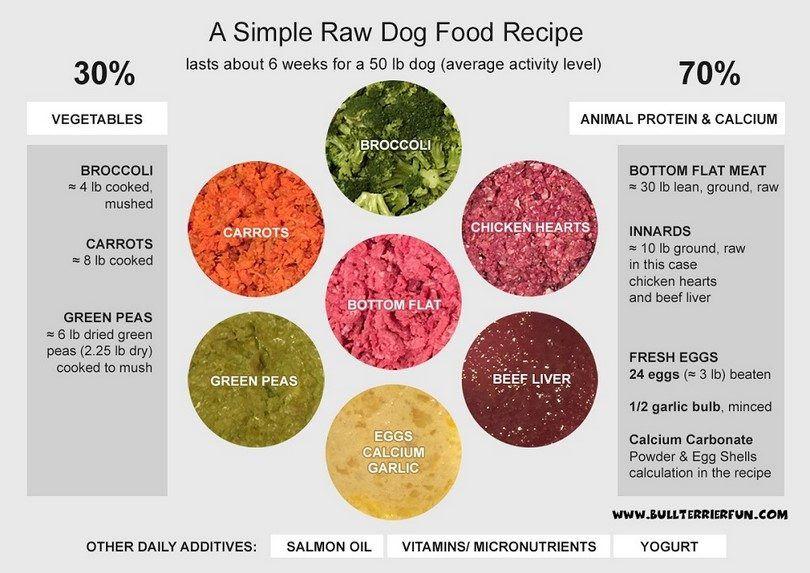Los alimentos crudos perro