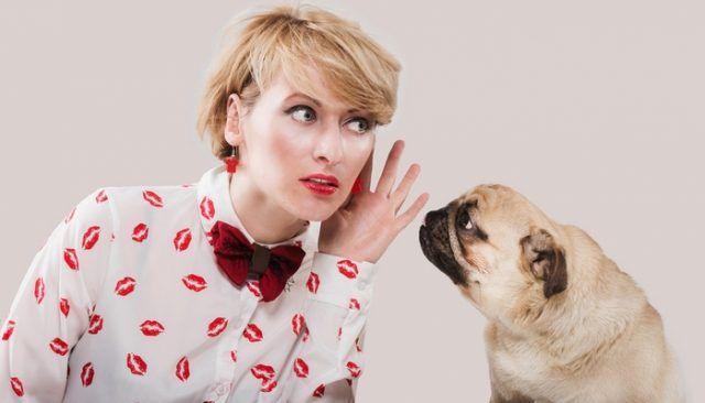 La nueva tecnologГa ha podido ver a los perros comunicarse con nosotros a travГ©s de un juguete