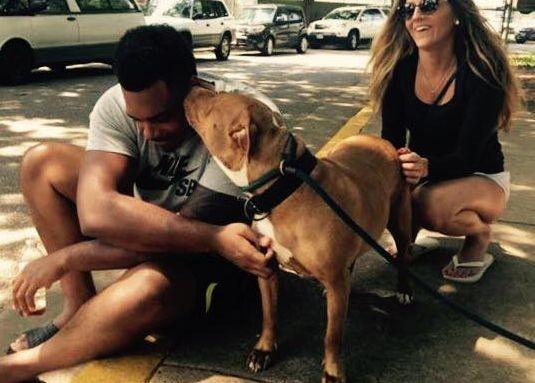 Jugador de la nfl entra en la vivienda, pide el perro más `no tan adoptables`