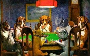 ¿Es su perro un adicto al juego