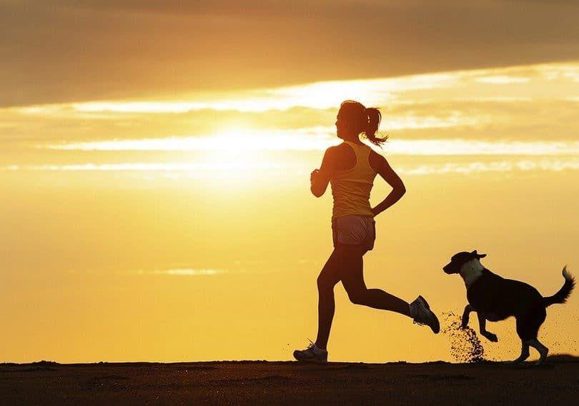 El ejercicio con su perro