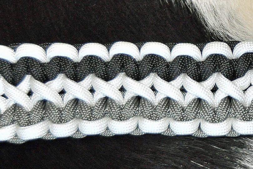 collar de perro de barras amplia Salomón