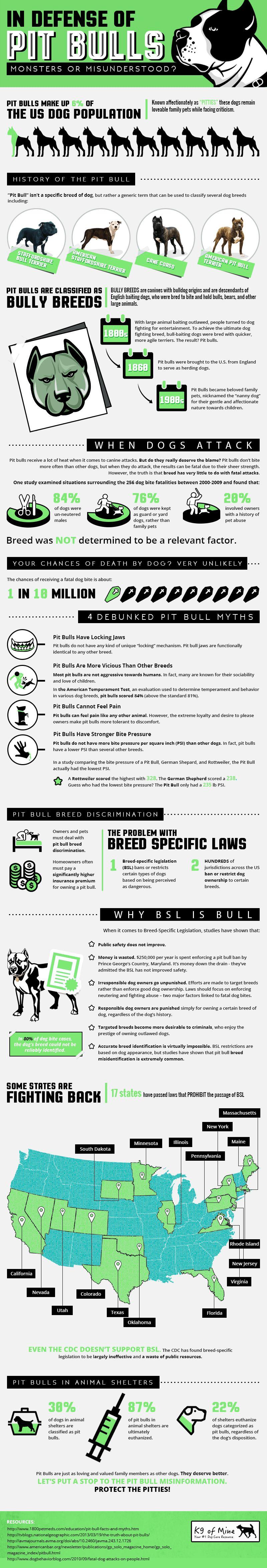 Pitbull infografía: la verdad sobre los pitbulls