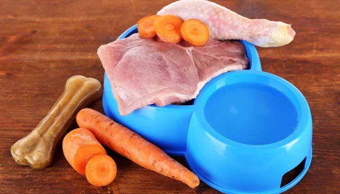 La dieta de alimentos crudos para perros - BARF