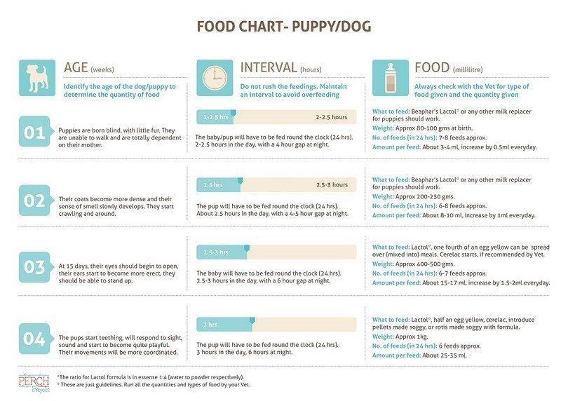 Cachorro tabla de alimentos