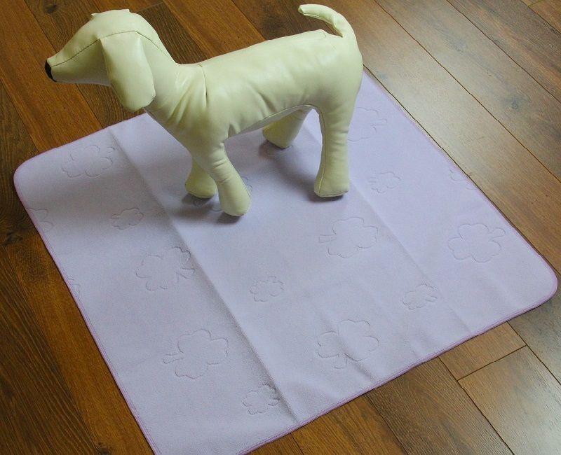 almohadilla de entrenamiento del perrito
