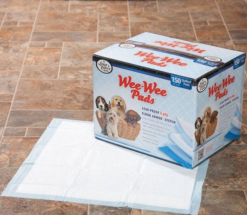 almohadillas de entrenamiento para las razas de juguete