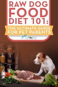La dieta alimentos para perros prima para perros 101