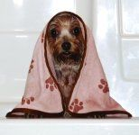 Luv & amp; Emma`s Dry Pets Towel for Dogs