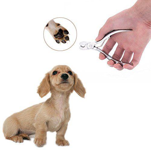 Nail MIU perro PET Clipper Set