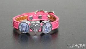 Zelda`s Song Custom Pet Themed Photojewelry Review