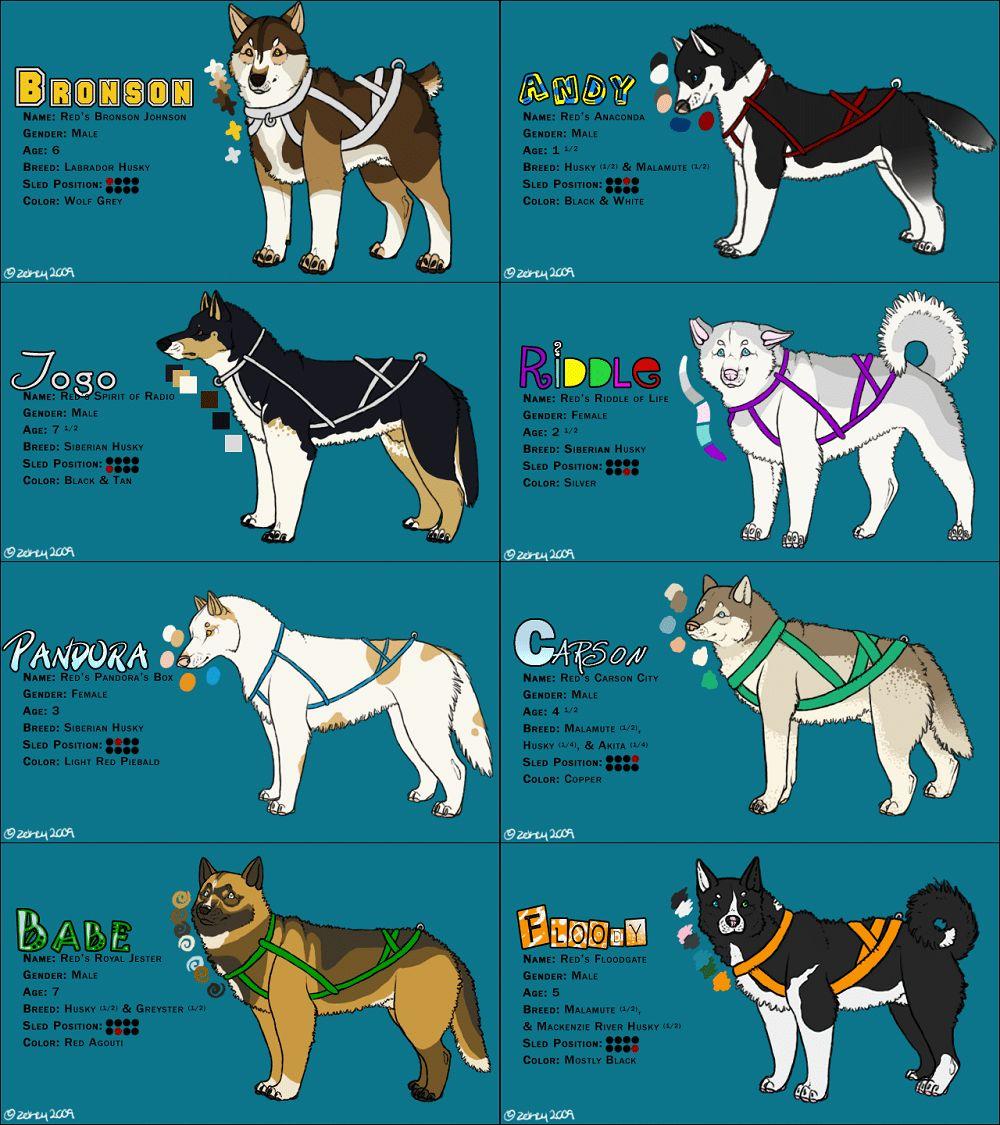 Trineo de perros
