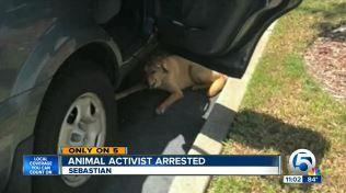 Presidente spca detenido por el rescate de perro atado en el estacionamiento caliente