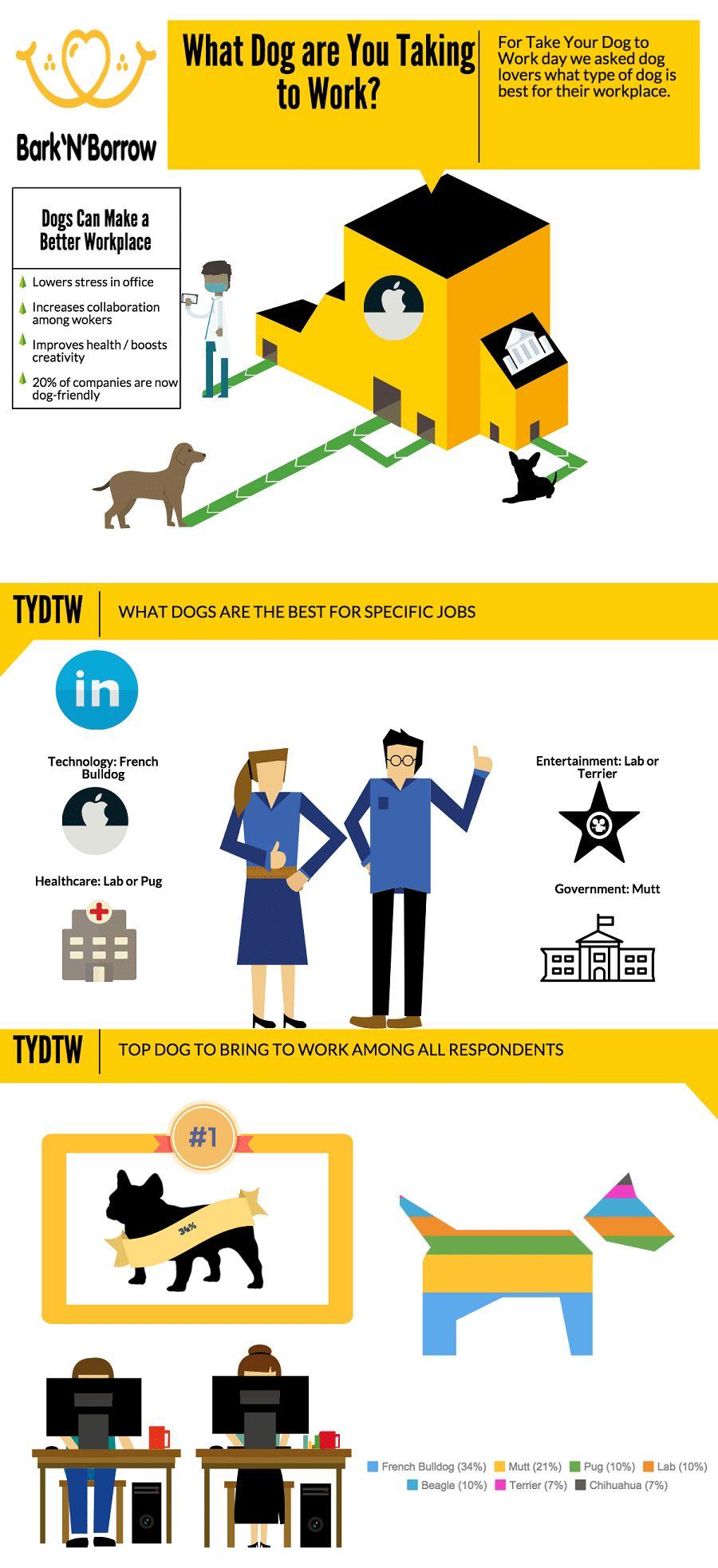 Traer a su perro al trabajo