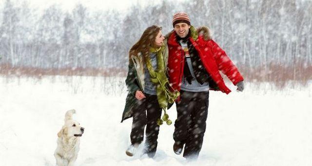 El paseo del perro en el frío y la nieve