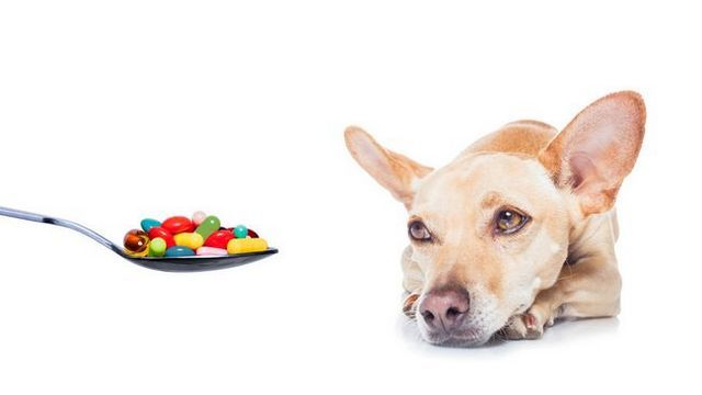 La industria de los suplementos está mintiendo a usted: sus perros pueden estar en peligro