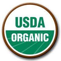 La verdad sobre los alimentos orgánicos perro