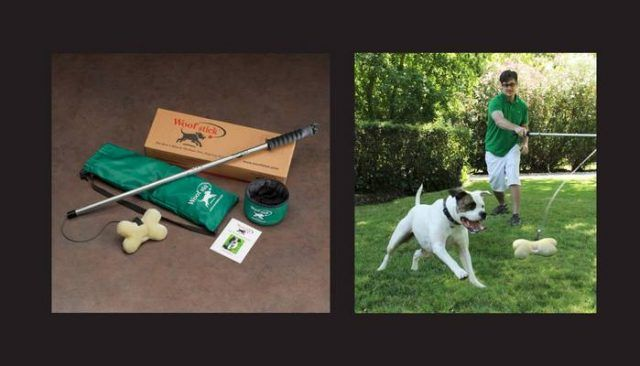 El Woofstick Isn`t Your Average Dog Toy