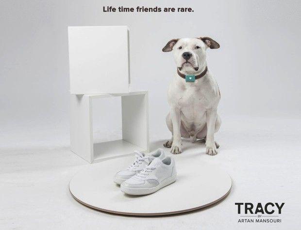 Esta nueva tecnologГa da a su perro una Voz
