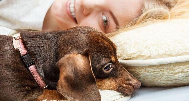 Mujer que pone con un perro