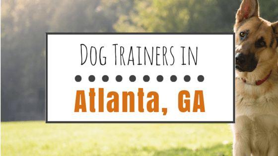 Las 10 mejores entrenadores de perros en atlanta, georgia