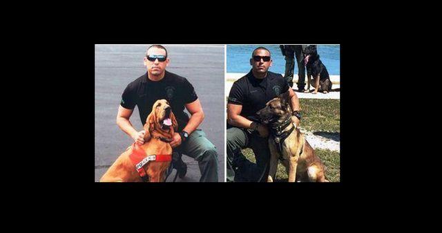 Dos k9s policía mueren en caliente coche patrulla del oficial
