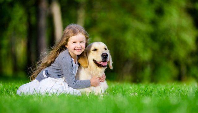Perro salva servicio increíble chica de 5 millas de distancia!