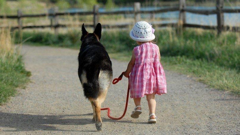 Niña que recorre un perro