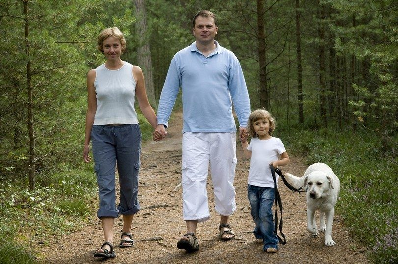 pasear al perro de la familia