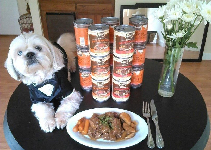 Las mejores marcas de alimentos para perros