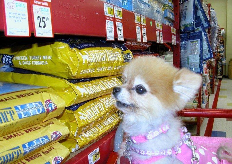 marcas de alimentos para perros