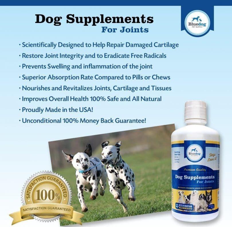 Suplementos para perros para la máxima calidad articulaciones fuerza máxima