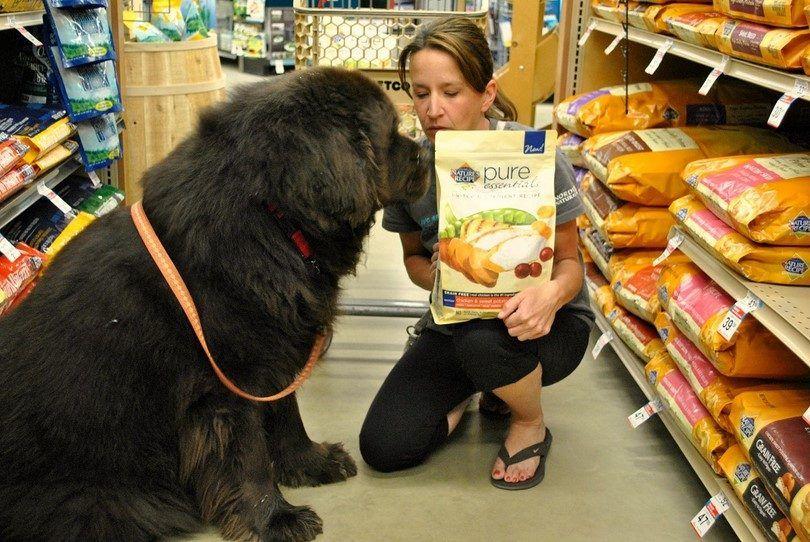 La elección de alimentos para perros