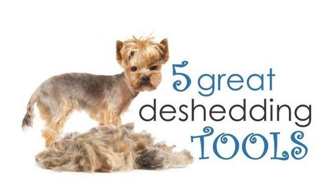 ¿Cuál es la mejor herramienta deshedding para los perros?