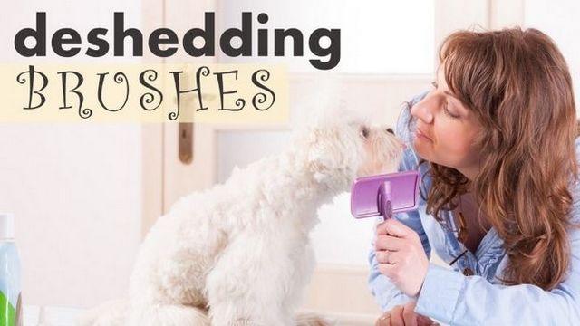 ¿Cuál es el mejor cepillo de perro a perro derramamiento?