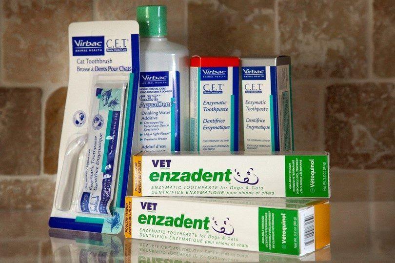 pasta de dientes CET