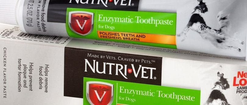 Nutri-Vet enzimática de pollo con sabor a pasta de dientes caninos